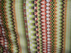 Printed Cotton Shirting. France