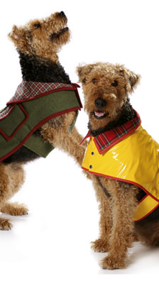 Burda Dog coat 7752