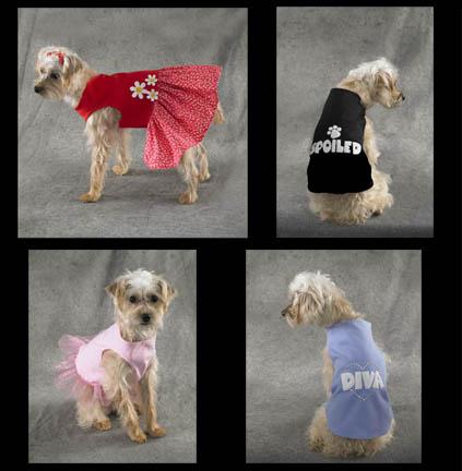 Kwik Sew Pets Shirts and Dress 3465