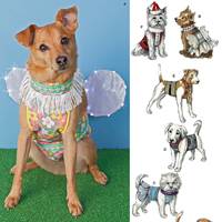 Sewing Patterns & Pets Pattern Reviews