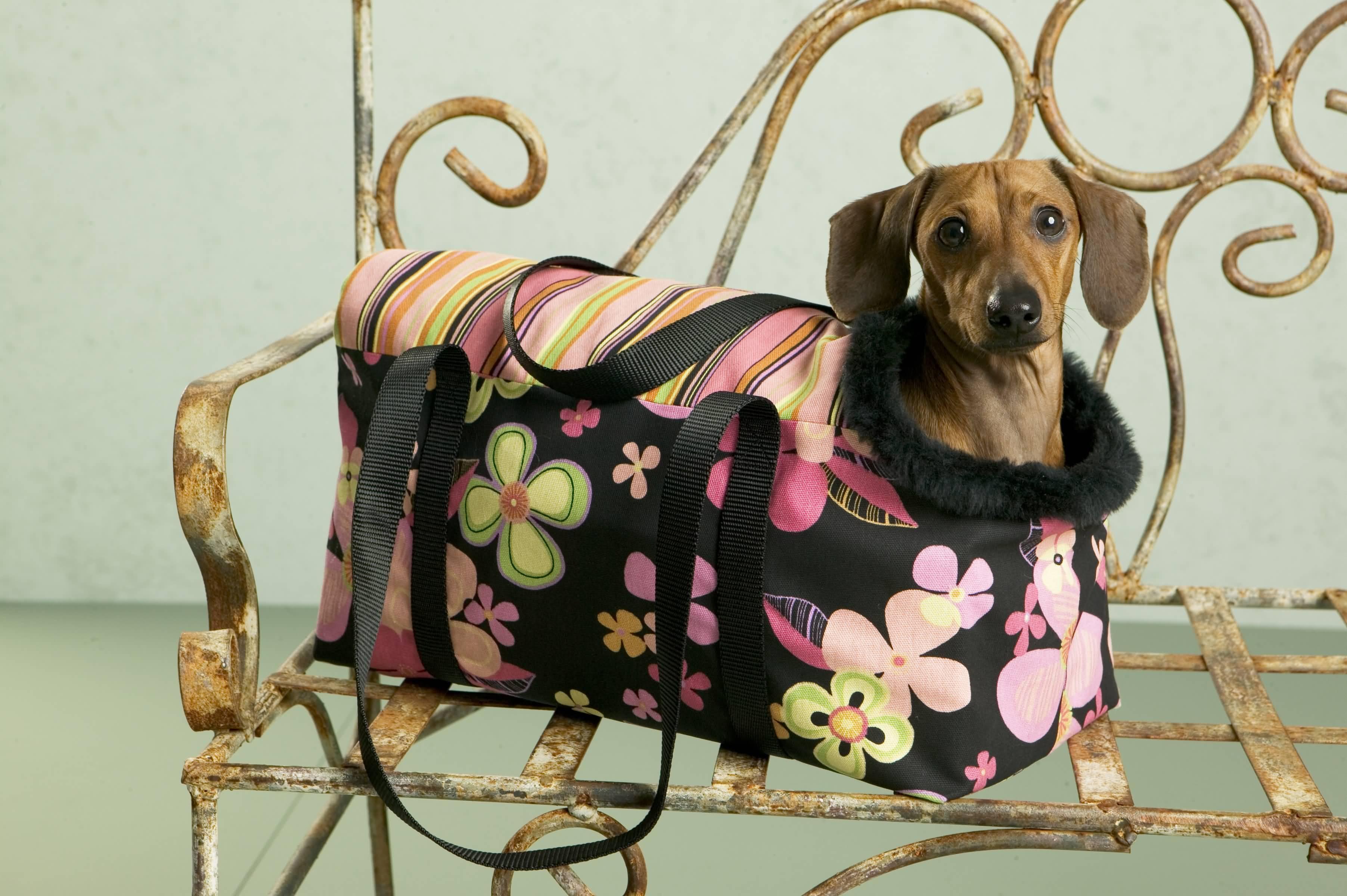 Free Dog Harness Dress Pattern